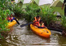 Wetland Restoration Project: A success